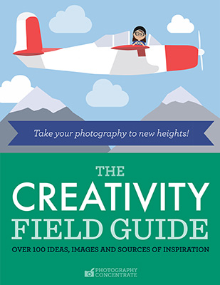 The Creativity Field Guide