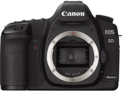 The Portrait and Wedding Photographers Tool Kit // Part 2 : Camera Selection