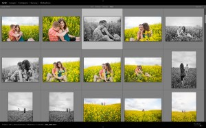 Lightroom Tip: Create Better Images By Reviewing