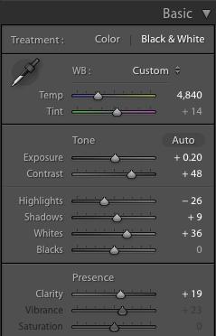 Lightroom Basic Panel Adjustments