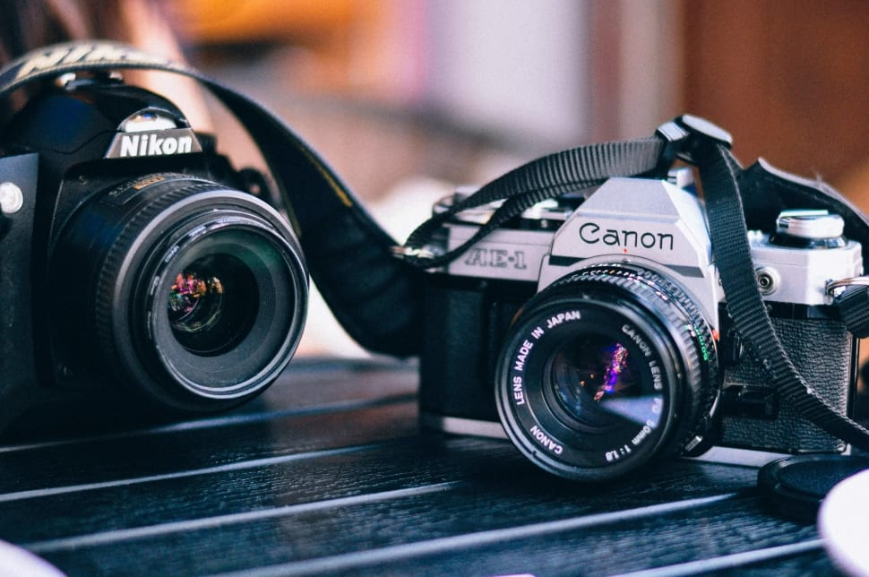 Canon 80D vs. Nikon D7200: Which One Should You Buy in 2019?