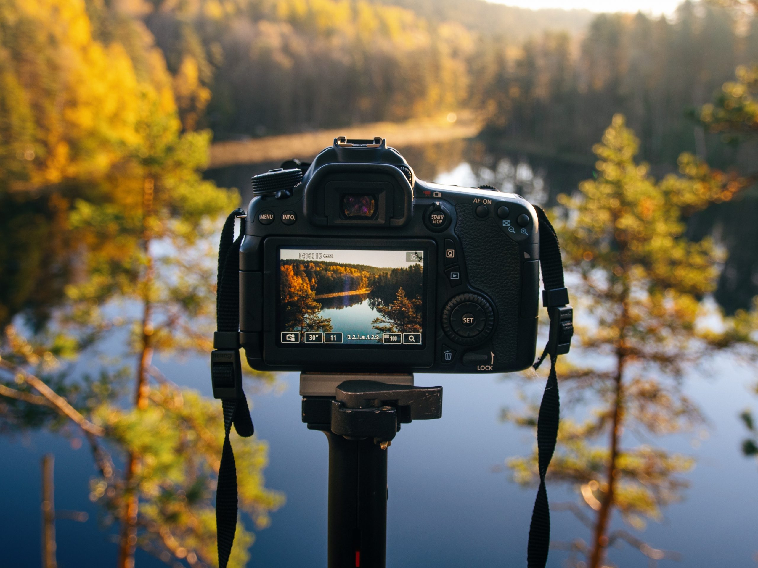 Capture Nature With The Best Camera For Landscape Photography